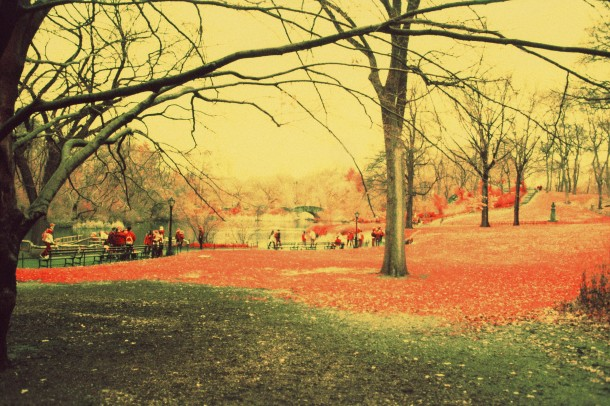 Central Park - Canon EF - InfraChrome FPP 400 iso - filtre rouge