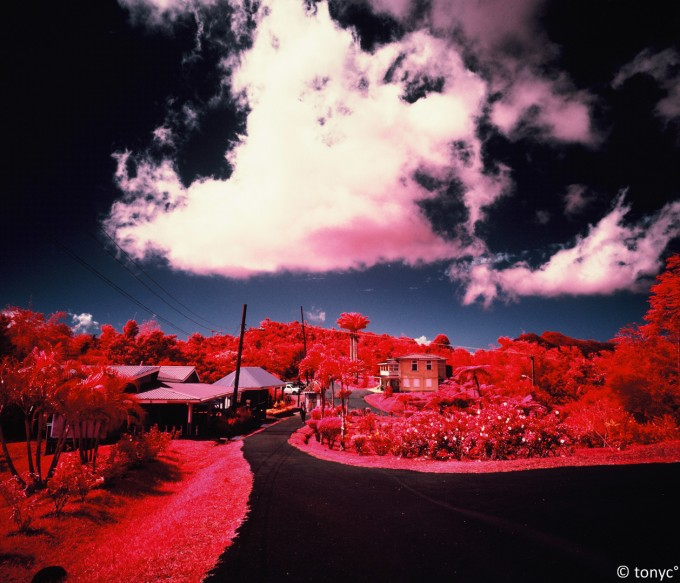 Photo infrarouge couleur par Tony Kajtazi