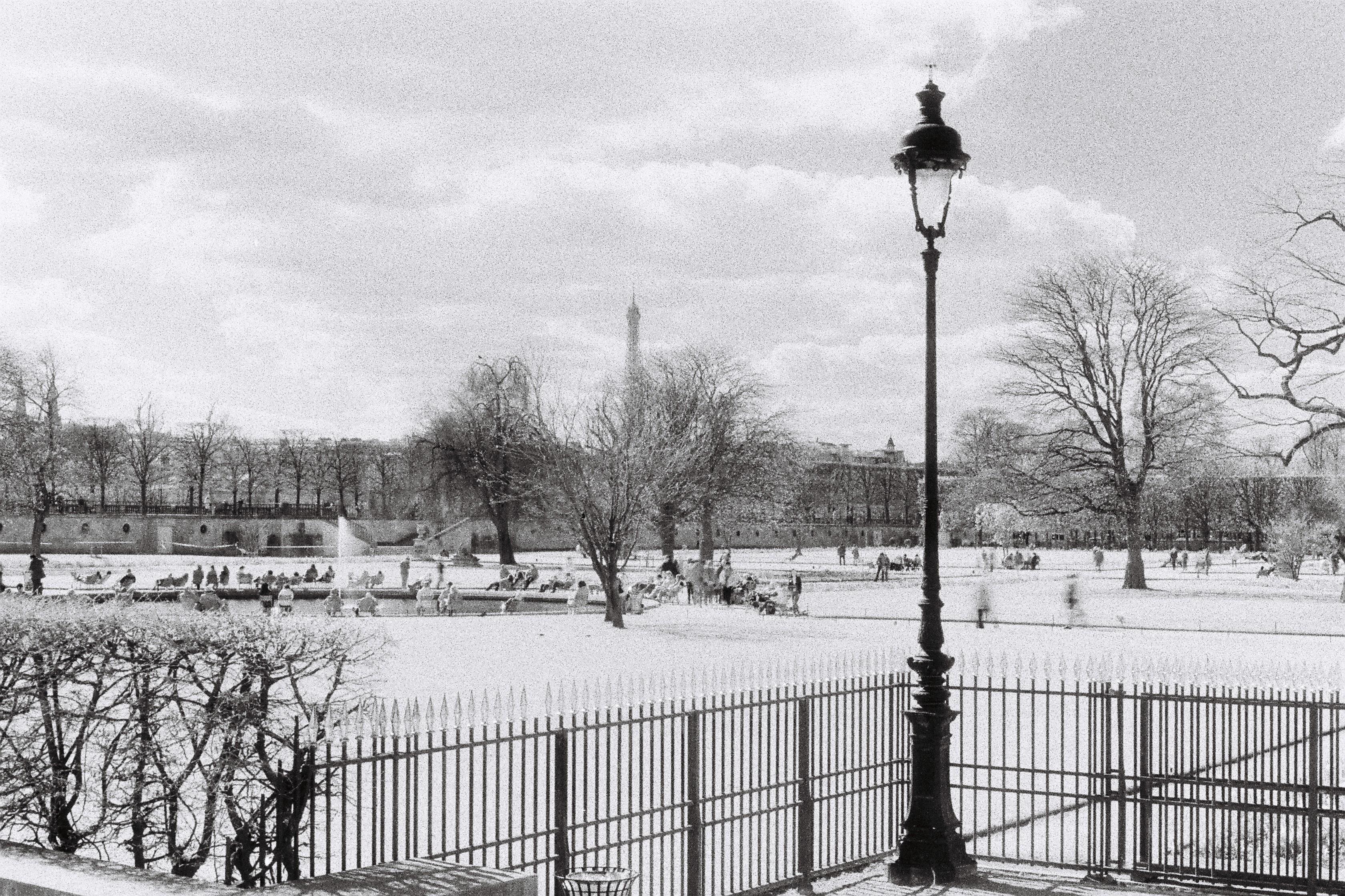 Infrarouge noir et blanc analog you for Jardin noir et blanc
