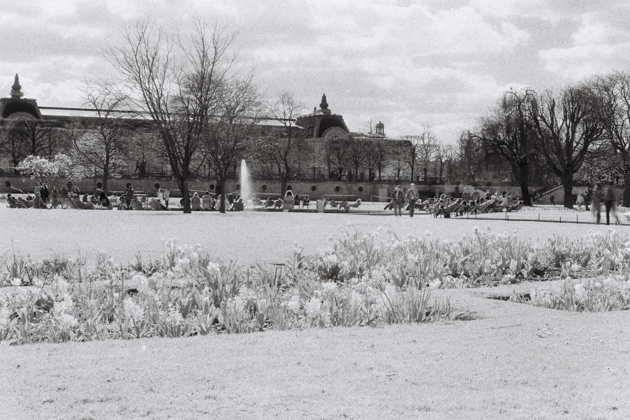 Jardin des Tuileries - Canon A1 - Pellicule SFX 200 Ilford