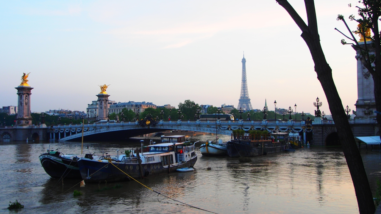 Le Pont Alexandre III - Olympus OM-D E-M5