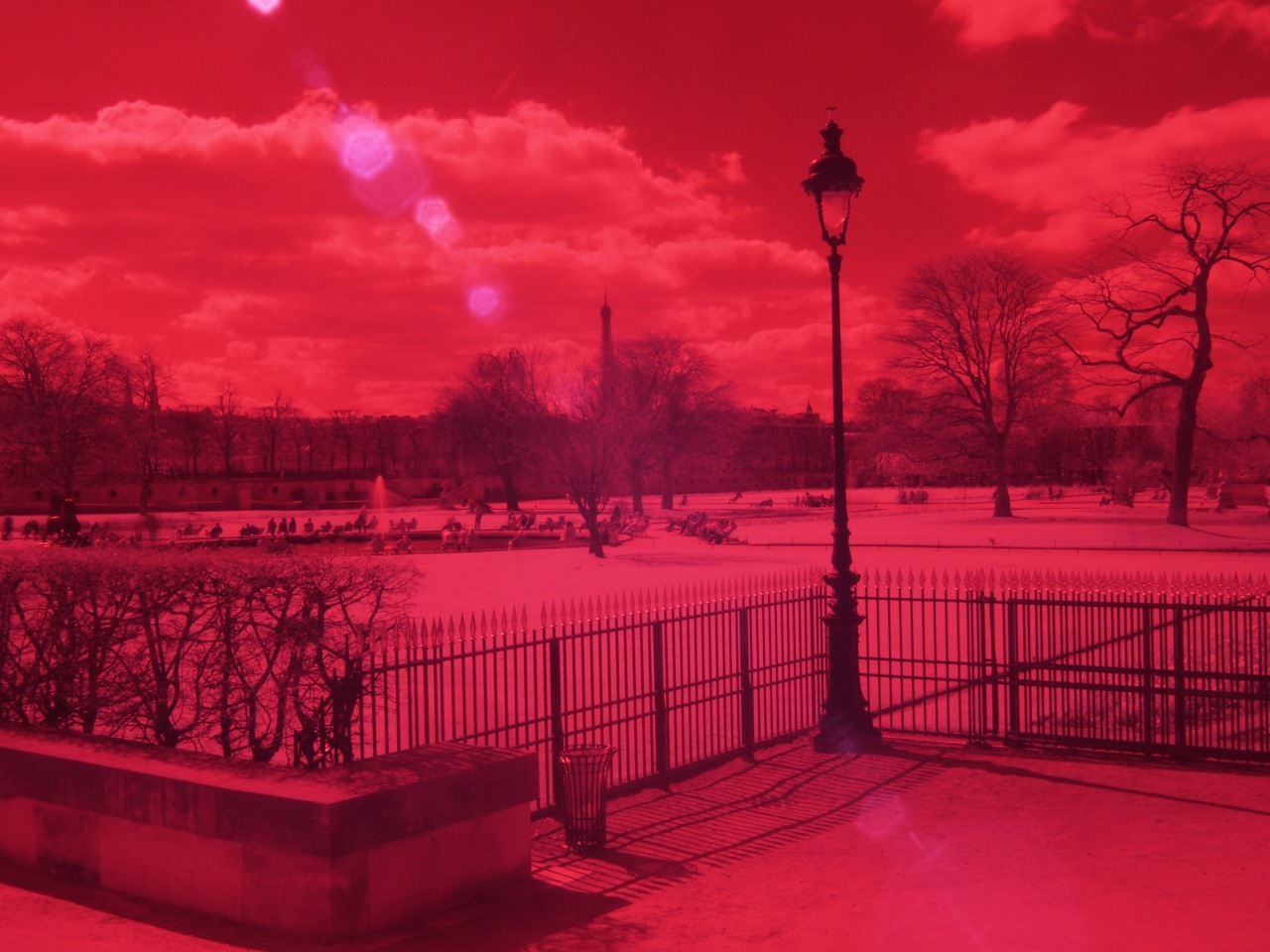 Jardin des Tuileries - Olympus OM-D EM-5 - filtre infrarouge heliopan 715