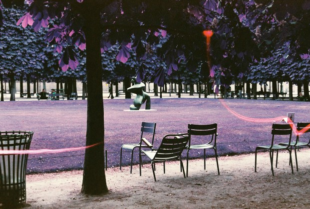 Jardin des Tuileries - Lomochrome Purple - Canon EF