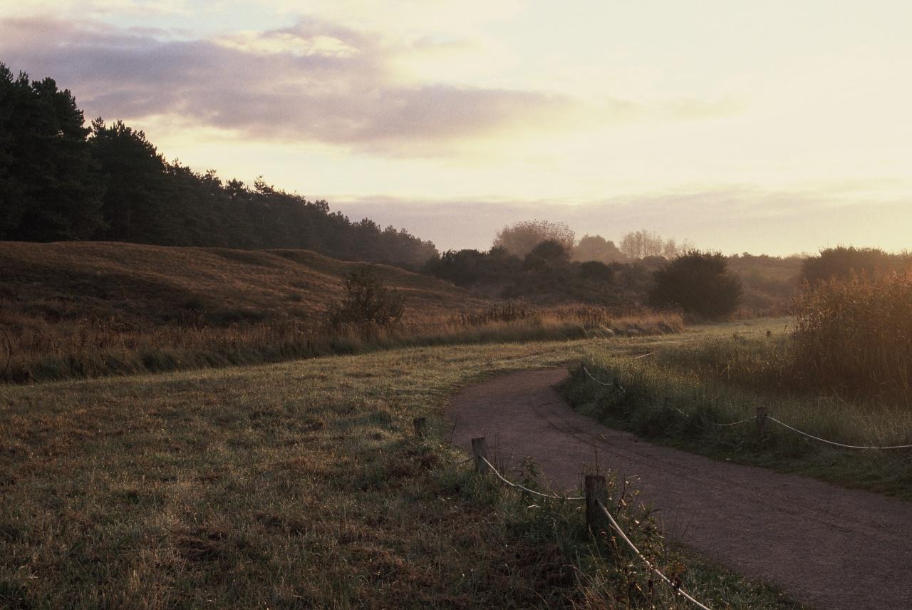 Petit chemin - Canon EOS 100 - 50 mm f/1.4 - Fuji Sensia 200