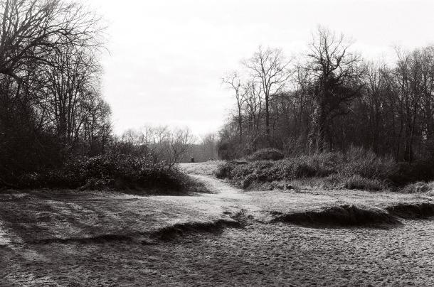 Petit chemin - Canon EOS 100 - Ilford HP 5 + 400