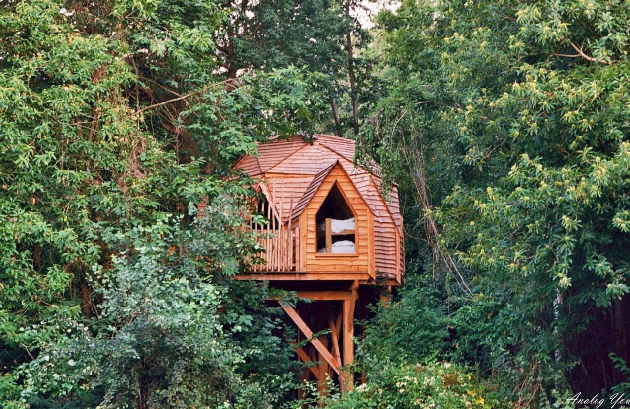 Une cabane dans laforêt